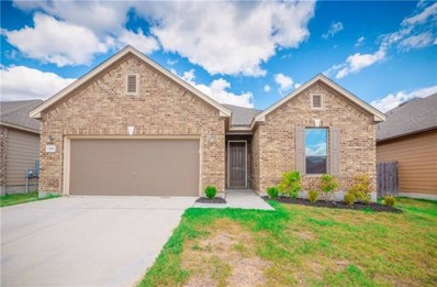 13917 James Garfield St, Manor, TX 78653 - MLS##: 5469844