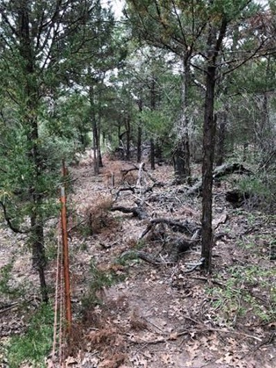 LOT 5 Lumber Jack Ct, Bastrop, TX 78602 - #: 5538533