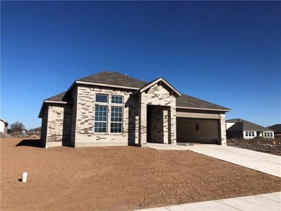 305 Colthorpe Lane Ln, Hutto, TX 78634 - MLS##: 5974682