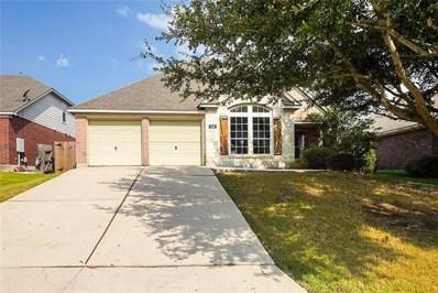 349 Otono Loop, Kyle, TX 78640 - MLS##: 6199797