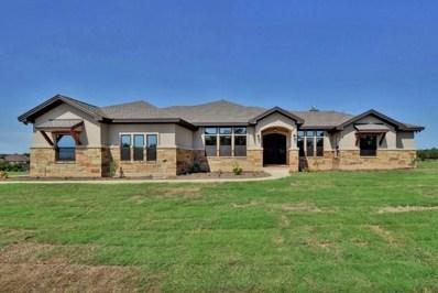 116 Quiet Oak Cove, Liberty Hill, TX 78642 - #: 6215385