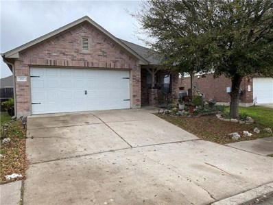 132 Lone Tree Holw, Buda, TX 78610 - MLS##: 6460257