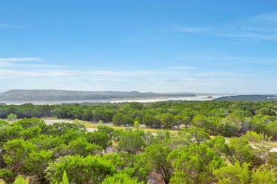 17720 Maritime Point Dr UNIT 203, Jonestown, TX 78645 - MLS##: 6678187