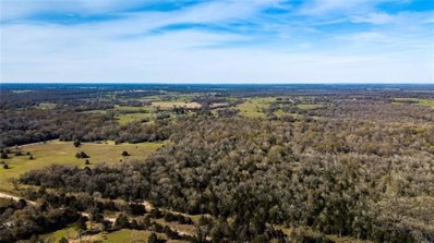 0000 Tract 11 FM 3091, Other, TX 77864 - MLS#: 6797645