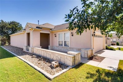 216 Limestone Shoals Ct, Georgetown, TX 78633 - MLS##: 6846620
