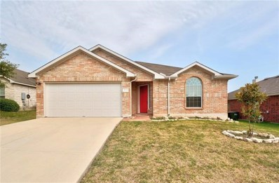 1725 Amberwood Loop, Kyle, TX 78640 - #: 6893015