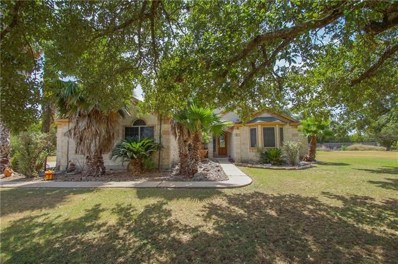 338 Richards Dr, Buda, TX 78610 - MLS##: 6942503