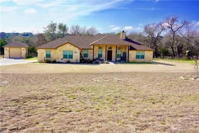 255 County Road 3350, Kempner, TX 76539 - MLS##: 6991566