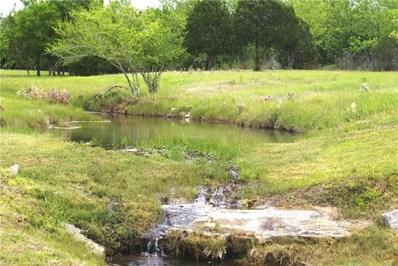 114 Roanoak Dr, Dripping Springs, TX 78620 - MLS##: 6997062