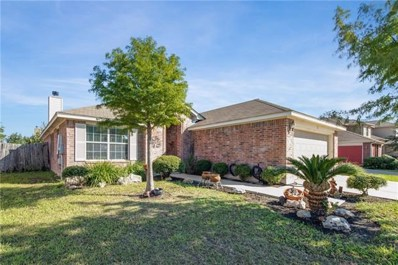 207 Mollie Drive, Hutto, TX 78634 - #: 7005177
