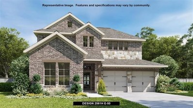 311 Carpenter Hill Dr, Buda, TX 78610 - MLS##: 7084474