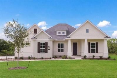 173 Double Eagle Ranch Dr, Cedar Creek, TX 78612 - #: 7239125