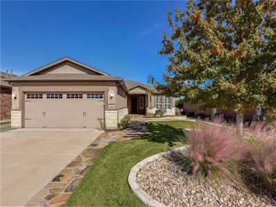 203 Cathedral Mountain Pass, Georgetown, TX 78633 - MLS##: 7275231