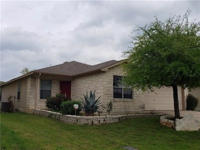 132 Granite Path, Liberty Hill, TX 78642 - MLS##: 7314643