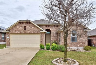 207 Strawberry Blonde Dr, Buda, TX 78610 - MLS##: 7413898