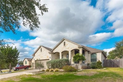 17614 Sly Fox Dr, Dripping Springs, TX 78620 - MLS##: 7424693