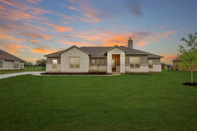 310 Buffalo Trl, Liberty Hill, TX 78642 - MLS##: 7634216