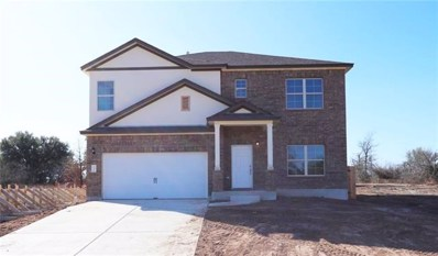 252 Falling Star Ln, Georgetown, TX 78628 - MLS##: 7662275