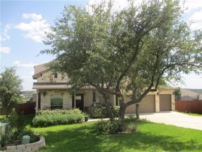 17701 Linkwood Dr, Dripping Springs, TX 78620 - MLS##: 7709234