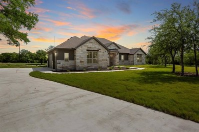 412 Buffalo Trl, Liberty Hill, TX 78642 - MLS##: 7881991