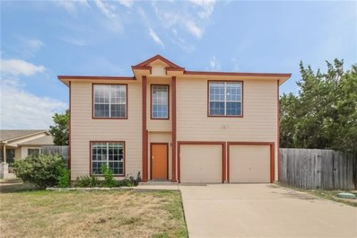 14710 Great Eagle Trl, Austin, TX 78734 - MLS##: 8041930