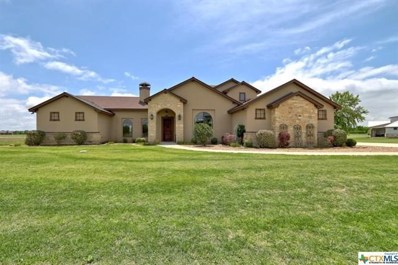 925 River Ranch Cir, Martindale, TX 78655 - #: 8056415