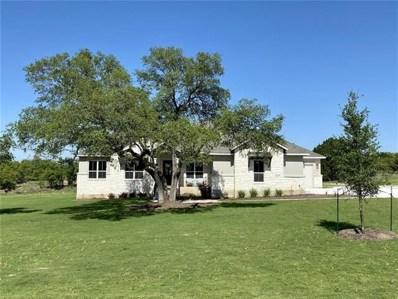 504 Lodge Ct, Liberty Hill, TX 78642 - MLS##: 8135086