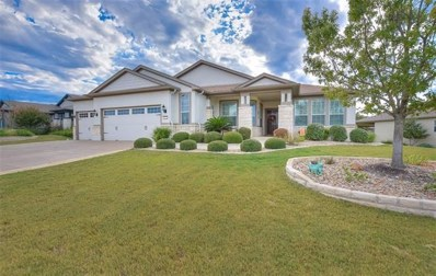 117 Coleto Creek Ln, Georgetown, TX 78633 - MLS##: 8154111