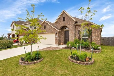 341 Vista Gardens Dr, Buda, TX 78610 - MLS##: 8187275