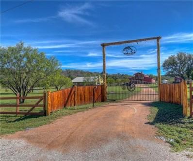 800 Quarter Horse Circle, Kingsland, TX 78639 - #: 8299157