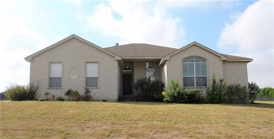 130 Blanco Dr, Hutto, TX 78634 - MLS##: 8299618
