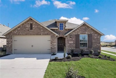 356 Tailwind Dr, Kyle, TX 78640 - #: 8608594