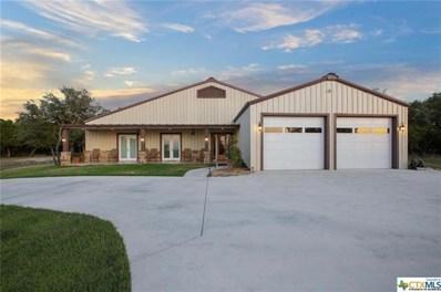155 County Road 254, Georgetown, TX 78633 - MLS##: 8721566