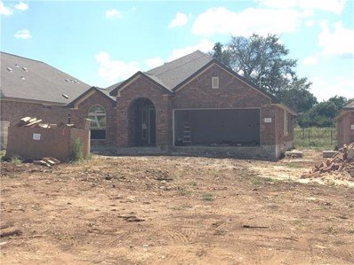 1421 Morning View Rd, Georgetown, TX 78634 - #: 8884579