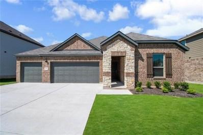 163 Limonite Lane, Liberty Hill, TX 78642 - #: 8915982