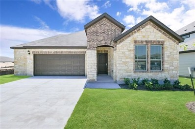 147 Limonite Ln, Liberty Hill, TX 78642 - MLS##: 8970466