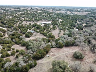 14440 Sawyer Ranch Rd, Dripping Springs, TX 78620 - #: 9222025