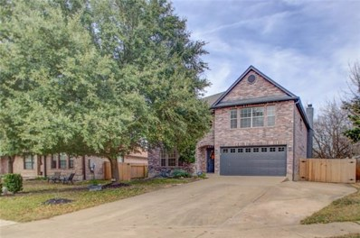 909 Skylark Hills Ln, Pflugerville, TX 78660 - MLS##: 9389561