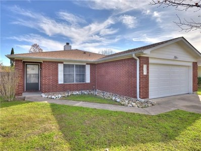 228 Amandas Way, Buda, TX 78610 - MLS##: 9493548