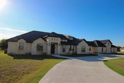 514 River Ranch Cir, Martindale, TX 78655 - #: 9518808
