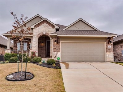 162 Mount Ellen St, Hutto, TX 78634 - MLS##: 9527871