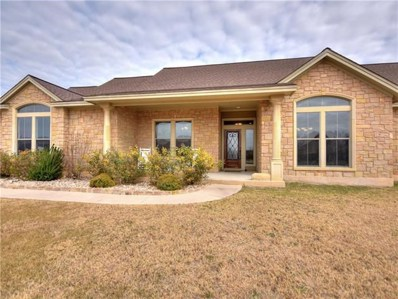 204 Angela Drive, Liberty Hill, TX 78642 - #: 9622078