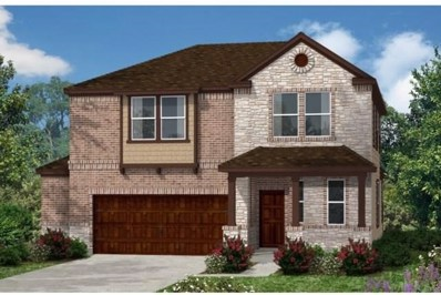 311 Jarbridge Drive, Kyle, TX 78640 - #: 9639264