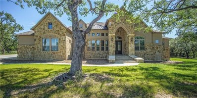 1452 Decanter Dr, New Braunfels, TX 78132 - #: 9725332