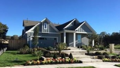 600 Goldenwave Way, Liberty Hill, TX 78642 - MLS##: 9771297