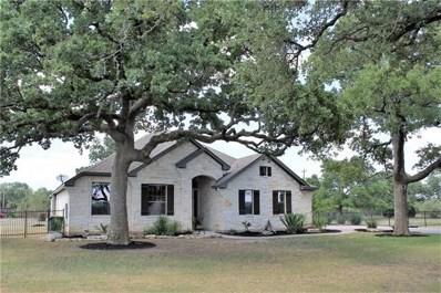 577 Shelf Rock, Driftwood, TX 78619 - #: 9820723