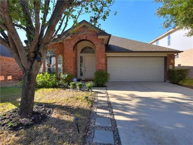 10308 Big Thicket Dr, Austin, TX 78747 - MLS##: 9847555
