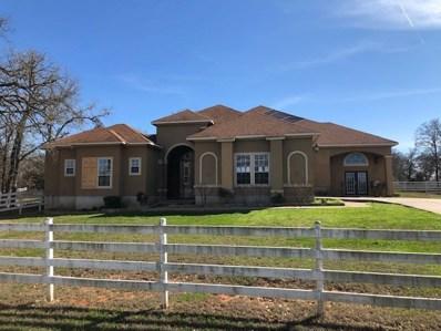 107 Clairmont Cv, Cedar Creek, TX 78612 - MLS##: 9891437