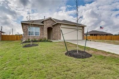 245 Cibolo Creek Drive, Kyle, TX 78640 - #: 9924197