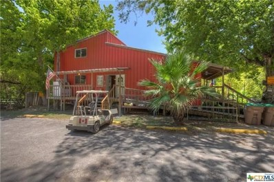 7308 and 7296 River RD, New Braunfels, TX 78132 - #: 9952037